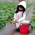 2016-12月-台北|內湖|清香休閒農場