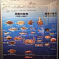 日本 山陰鳥取 賀露海岸 螃蟹館