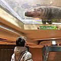 日本 x 北海道-旭川市 x 旭山動物園