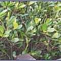 2011-03 桃園縣動物保護教育園區(新屋收容所)