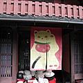 上京邂逅貓