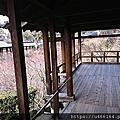 空無一人的京都