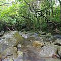 大城石澗 - Tai Shing Stream