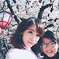 【2019.3月: 名古屋7天6夜親子自由行】