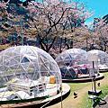 日本東京自由行初體驗2019