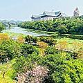 新竹金湖灣風鈴木