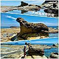 大坪海岸海豹岩望幽谷