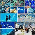 桃園XPARK水族館
