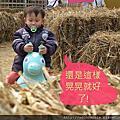 雲林農業博覽會之RODY跳跳馬