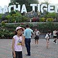 泰國-龍虎園