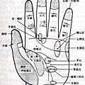 2013三鶯社大~烏克麗麗班上課記錄