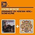 Lynyrd Skynyrd / 林納史金納合唱團