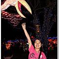2010台灣燈會續篇