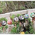2010.8月菊島海大旅遊團