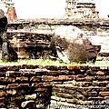 《Wat Maha That》泰國大城瑪哈泰寺 樹中佛頭 一日遊