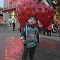 20150125大湖草莓