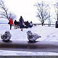 201112月北海道賞雪跨年趣