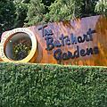 布查花園 Butchart Gardens