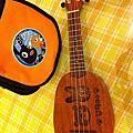 維克多音樂~烏克麗麗ukulele 夏威夷吉他 樂器