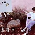 秋遊濟州 [ Live 日記-Day3 ] IG 網紅景點一日遊~ Nori 梅公園.粉紅亂草子.香蕉牛奶咖啡廳.柱狀節理海岸