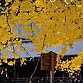 2013.12 廣島/神戶/京都