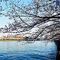 2015.03.30 日本關西自由行