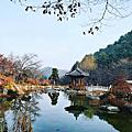 2016.11.18 首爾.京畿道.江原道自由行