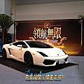 藍寶堅尼 Lamborghini  小牛