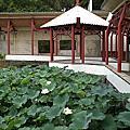 98/6/25新竹科學園區靜心湖