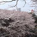 2008.03 濟州島4日遊-D4