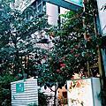 台北 | 松山區。Vanille 班尼拉香草料理