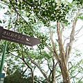 【景點】水社親水步道