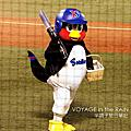 神宮球場(2010/9/18)