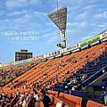 橫濱球場(2009/9/8)