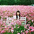 ‧玩‧寫真-hanako's sweet day