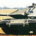 以色列國防軍(I.D.F)