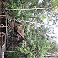 20120510-14-Samona Lodge