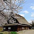 20130419 日本北陸 合掌村.高山祭典之森.上三之町