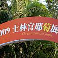 20091206 士林官邸菊展
