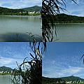 釣魚日記(1020929-青潭)