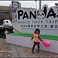 1600貓熊世界之旅-台北 / 北市府前廣場