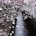 20080405_Kyoto