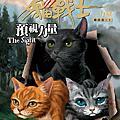 貓戰士各集封面