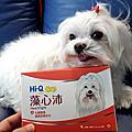 [開箱] Hi-Q pets 藻心沛,寵物心臟護理,維持心肌功能運作良好
