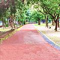 板橋柏克萊公園
