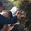 2016.02 【露營吧!】南投|魚池「魚雅筑」露營區