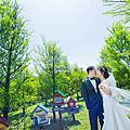 婚紗攝影景點推薦:忘憂森林