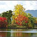 北海道中島公園秋色麗景