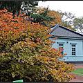 北海道大學植物園秋