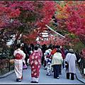 京都永觀堂楓華絕代